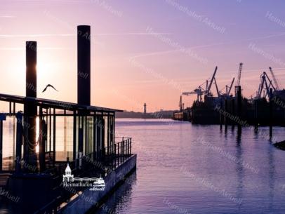 HAF-00005 - Hamburger Hafen - Fähranleger König der Löwen Sonnenaufgang