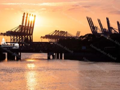 HAF-00006 - Hamburger Hafen - Hafengiraffen im Sonnenuntergang