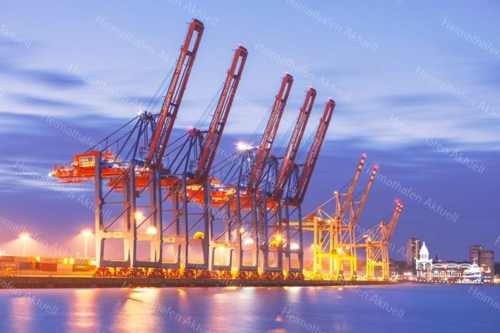 HAF-00010 - Hamburger Hafen - Hafengiraffen Containerterminal Tollerort