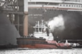 Hamburg Fotos - SHL-00017 Schlepper KOTUG SD ROVER vor Werft Blohm + Voss