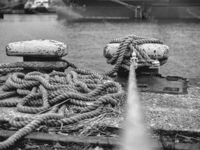 Hamburg Fotos - SUW-00014 Tampen Hamburger Hafen