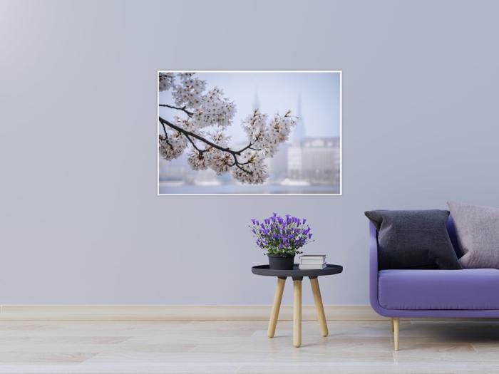 ALS-00008 Kirschblüte an der Binnenalster Wandbild