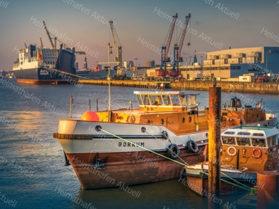 Hamburg-Fotos u. Bilder-HAF-00121-Hamburger-Hafen-BORKUM