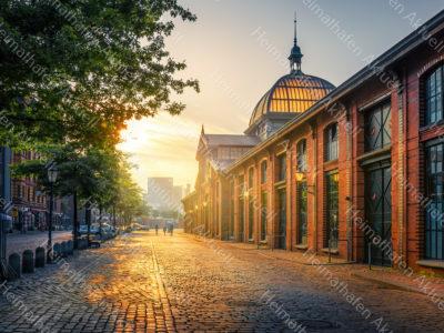Hamburg-Fotos u. Bilder -HAF-00140-Fischauktionshalle-Sonnenaufgang