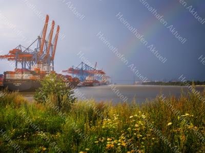 Hamburg-Fotos-HAF-00151-Altenwerder-Regenbogen-Sommer