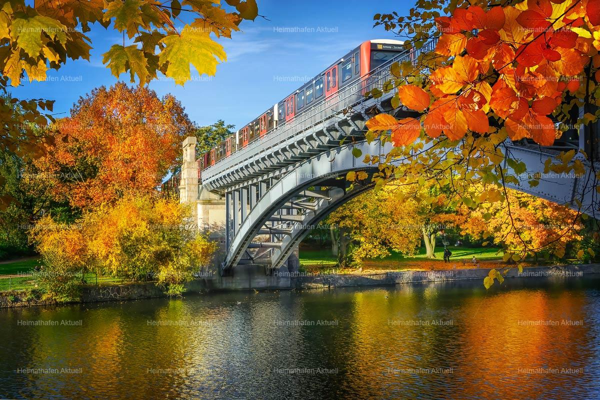 Hamburg-Fotos-HAL-00058-HAMBURGER-HOCHBAHN-Herbst an der Kuhmühle, Nähe UBahn Uhlandstrasse