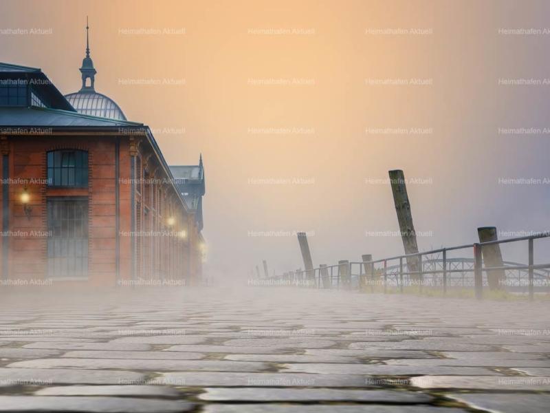 Hamburg-Foto-HAF-00103-Fischauktionshalle Nebel Sonnenaufgang