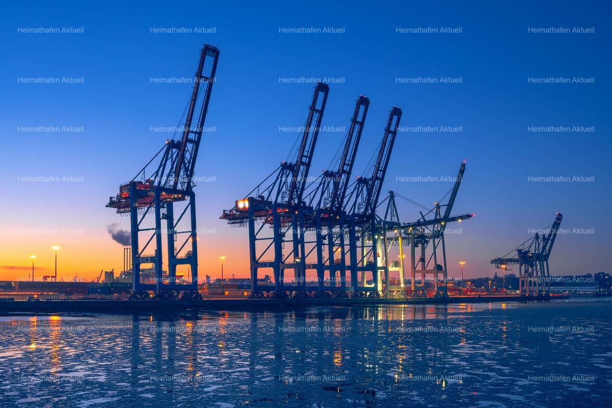Hamburg Hafenfotos-HAF-00237-Hafenkräne-Containerterminal-Tollerort-Blaue-Stunde